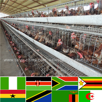 Trade assurance NO.1 Quality strong U type frame chicken farm building cheap chicken coops commercial chicken house