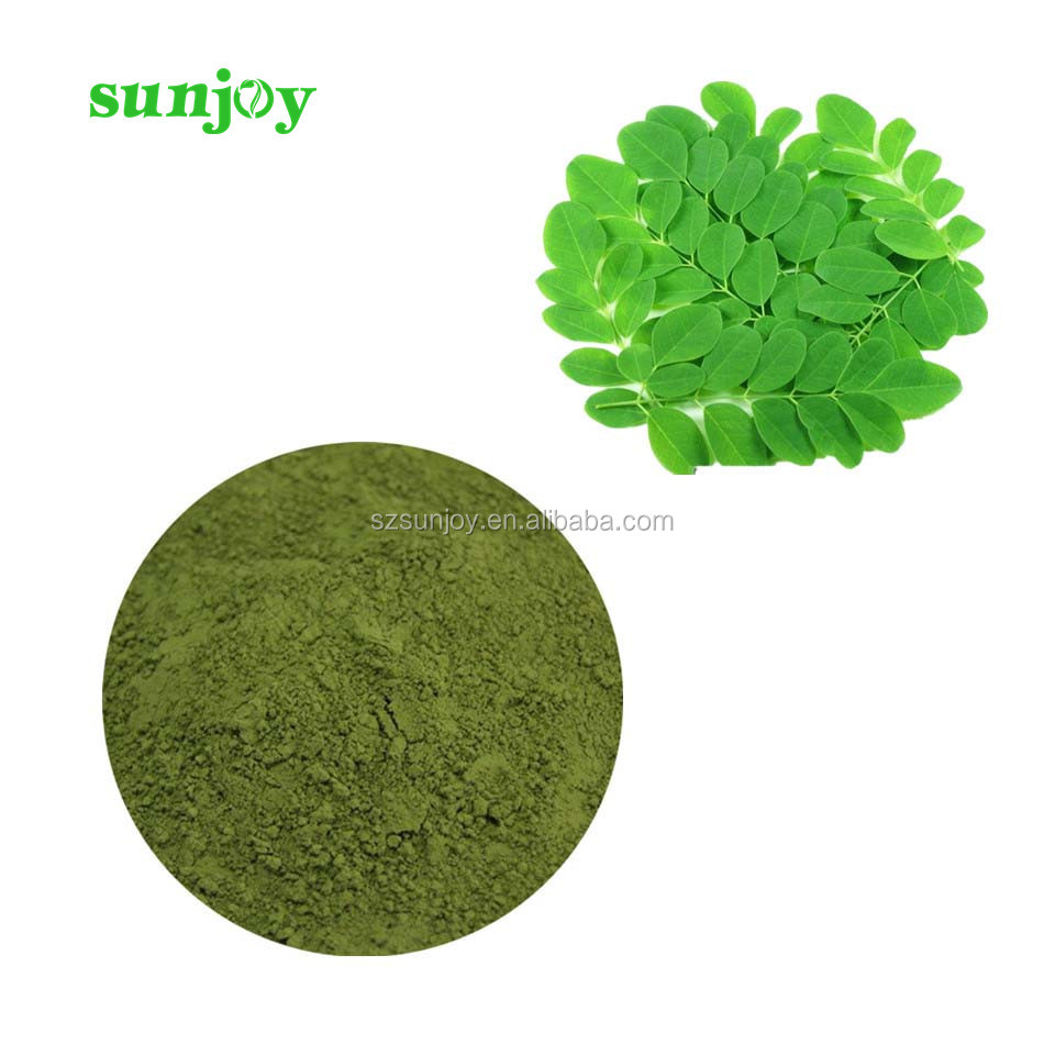Great stock competitive price dried moringa oleifera leaf powder