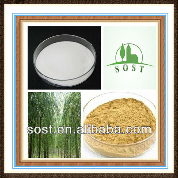 100% Natural White Willow Bark Extract