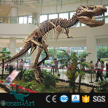BY-DY04091 Museum Animal Fossil Life Size Artificial Dinosaurs Skeleton For Sale