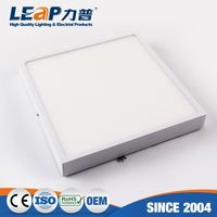 Personalized Design Bathroom Mirror Led Grow Celling Induction Ceiling Light