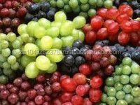 Best quality Fresh Grapes for sale