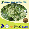 Feed Additive Pure Yucca Schidigera Extract Powder