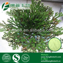 plant extract for cosmetic raw material ,amentoflavone powder hplc