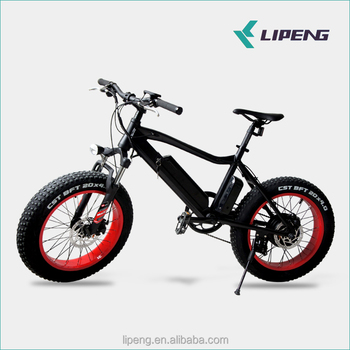20 inch fat tire electric bike 36v 350w