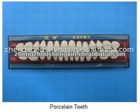 Dental Hot Seller Porcelain Teeth/ porcelain denture teeth