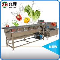 Electric vegetable pressure washer,mung bean sprout washing machine,mung bean sprout machine