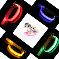 Customized New Design Led Flashing Light Durable Handmade Dog Lead Collar And Pet Leashes Dog Chain