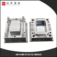Professional Manufacture Mold And Plastic Production