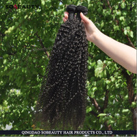 High Quality Factory Price Best Selling Unprocessed Wholesale Raw Virgin Human kinky curly cambodian hair