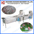 Hot selling fruits and vegetable processing equipment/cleaning machine