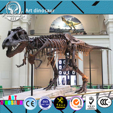 YS88H07 museum Artificial simulation dinosaur skeleton fossils