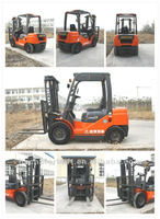China 2.5 Tons Japan ISUZU Engine Diesel Forklift