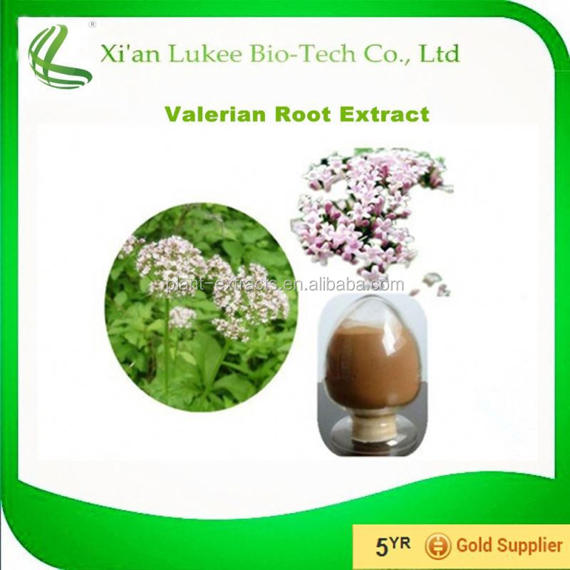 Factory Price Valerian root / Valeriana officinalis Extract