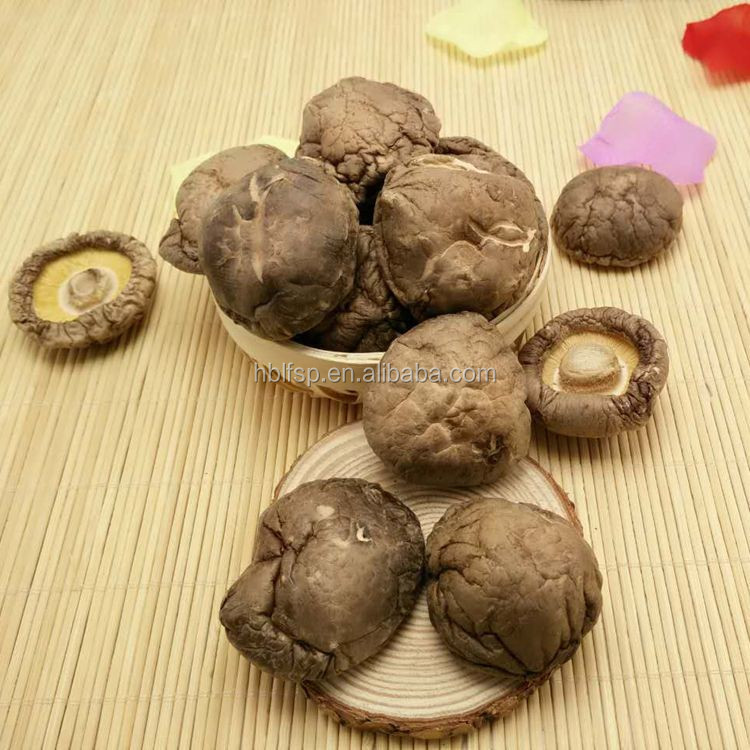 Dried Brown Smooth Shiitake Mushroom Whole