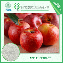 100% Natural and Competitive Prices Apple Extract and Juice Powder 10:1 with Free Sample