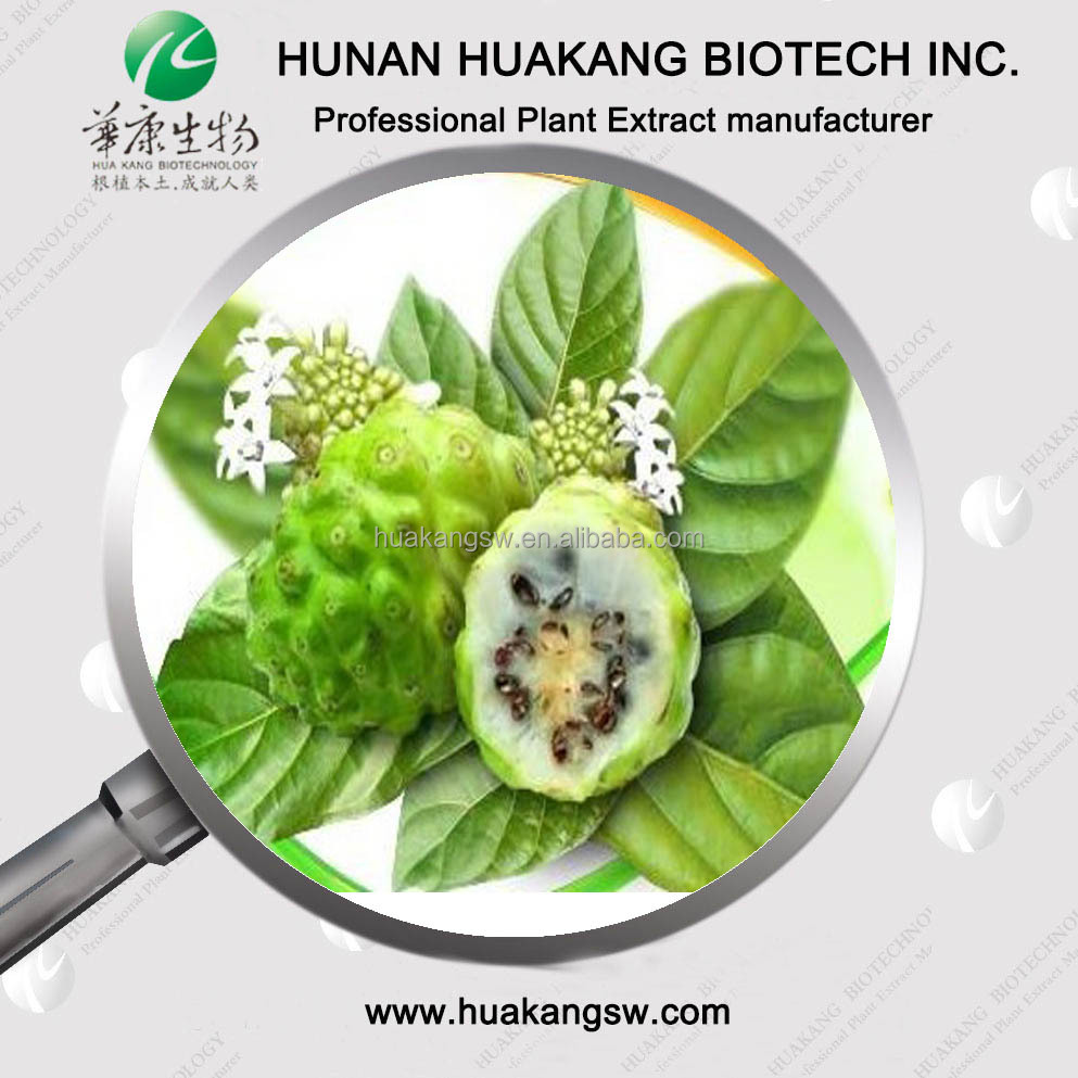 Spray dried Noni Fruit juice powder, Freeze dried Noni Fruit powder, Noni Fruit Powder