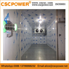 commercial ice cream cold storage room