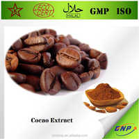 BNP ISO & HALAL Professional supply 100% natural high quality low fat cocoa powder