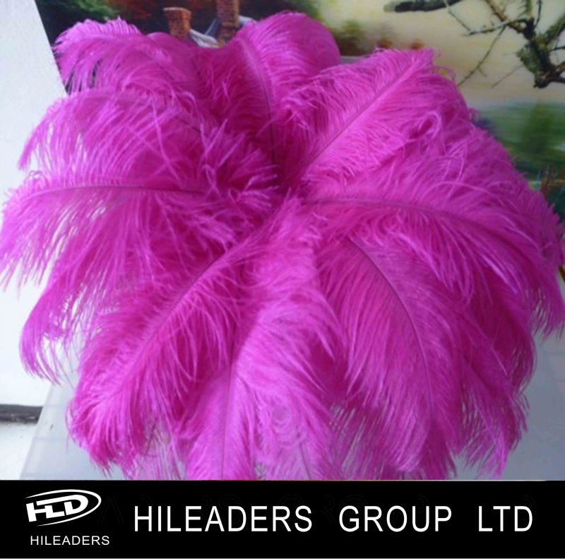 2020 new Fashion Decorative Long Ostrich Feather Chinese Wholesale