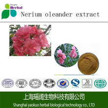 98% Best Selling Pure Natural Oleander Extract