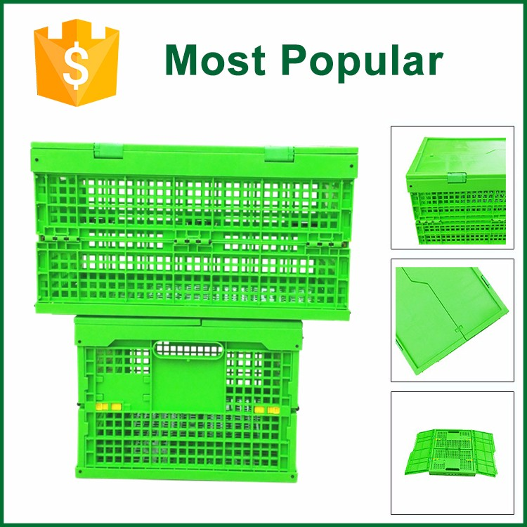 Food Grade Plastic Wine Bottle Crate