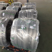 China Top Ten Selling Products of Stainless Steel Welded Wire Mesh Screen Made From 16 Gauge Stainless Steel Wire