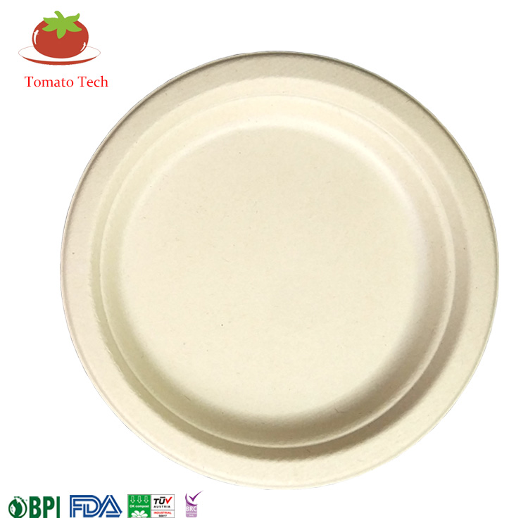 "Sugarcane Biodegradable & Compostable 7"" Plate"
