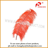 Party Decoration Ostrich Feather for Sale