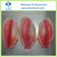 Frozen Kosher Tilapia Fillet
