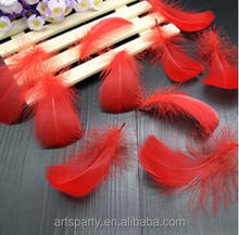 Feather Wholesale 10-15cm Dyed Red Tailed Rooster Feather for party&wedding decorations