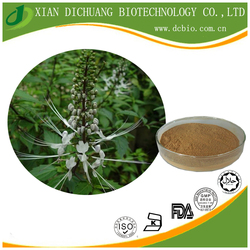 Black Cohosh Extract Powder Triterpenes Saponins 5% Free Sample