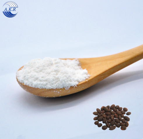 Wholesale Saw Palmetto Extract Powder for Saw Palmetto Capsules