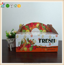 The new import fruit hand fruit and vegetable box cartoon gift box