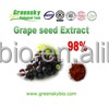 Naturally Organic Grape Seed Extract with 98% Proanthocyanidins