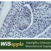 Wisapple Supply Pharmaceutical Grade Aspergillus Niger