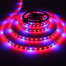 5050 led plant grow light strip Plant Tomato Lettuce Potato LED Strip Grow Lights 5red 1blue