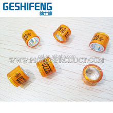 belg 2016 DV 2016 in stoch good quality cheap price the more the cheaper for pigeon ring