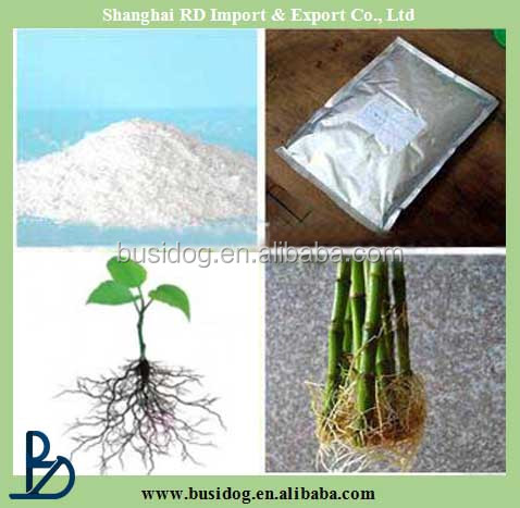 High quality rooting IBA indole 3 butyric acid 2.5% + naphthylacetic acid 2.5%SP