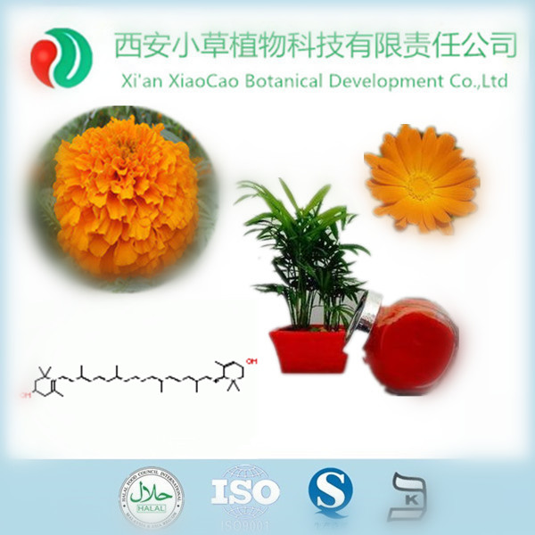 Manufacturer Supply High Quality Natural Lutein Extract,Natural Sources Lutein