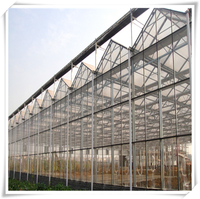 TAIYUAN Greenhouse Metal Mesh Agriculture Glass
