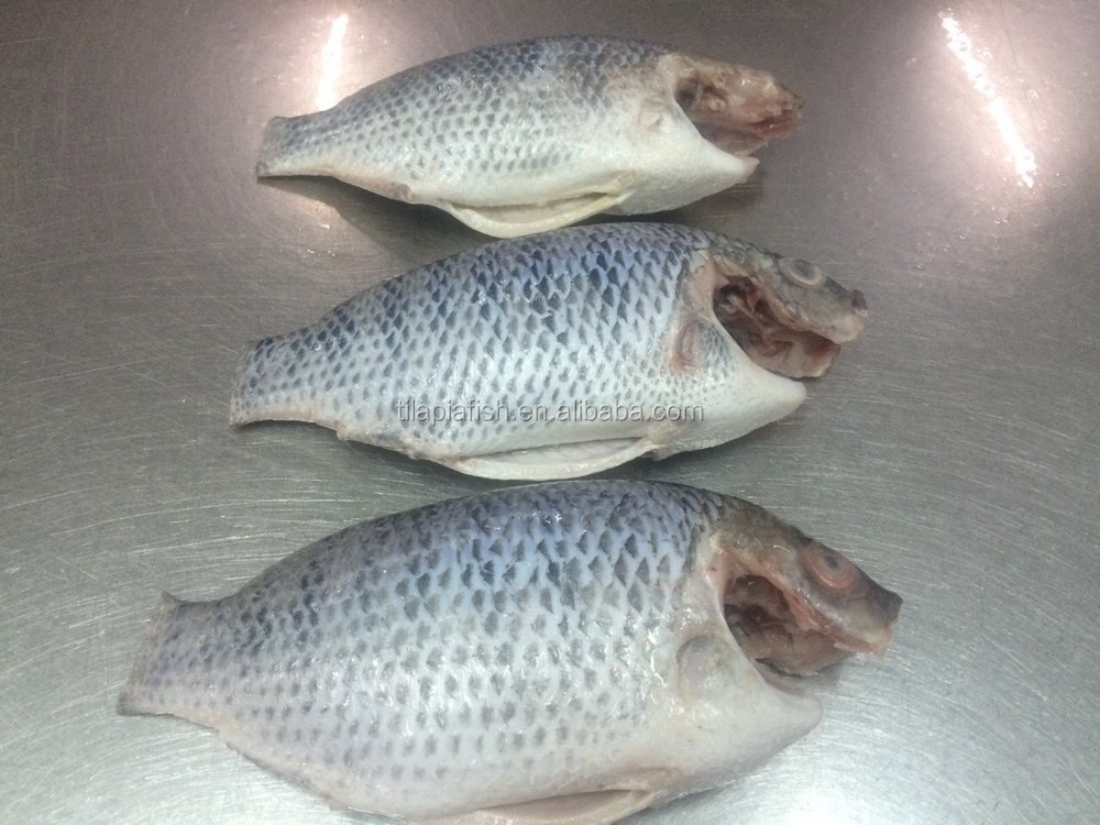 TILAPIA MOON CUT FROZEN FISH FACTORY