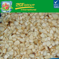 IQF frozen roasted garlic from China