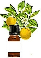 Neroli Bitter Orange Flowers Essential Oil