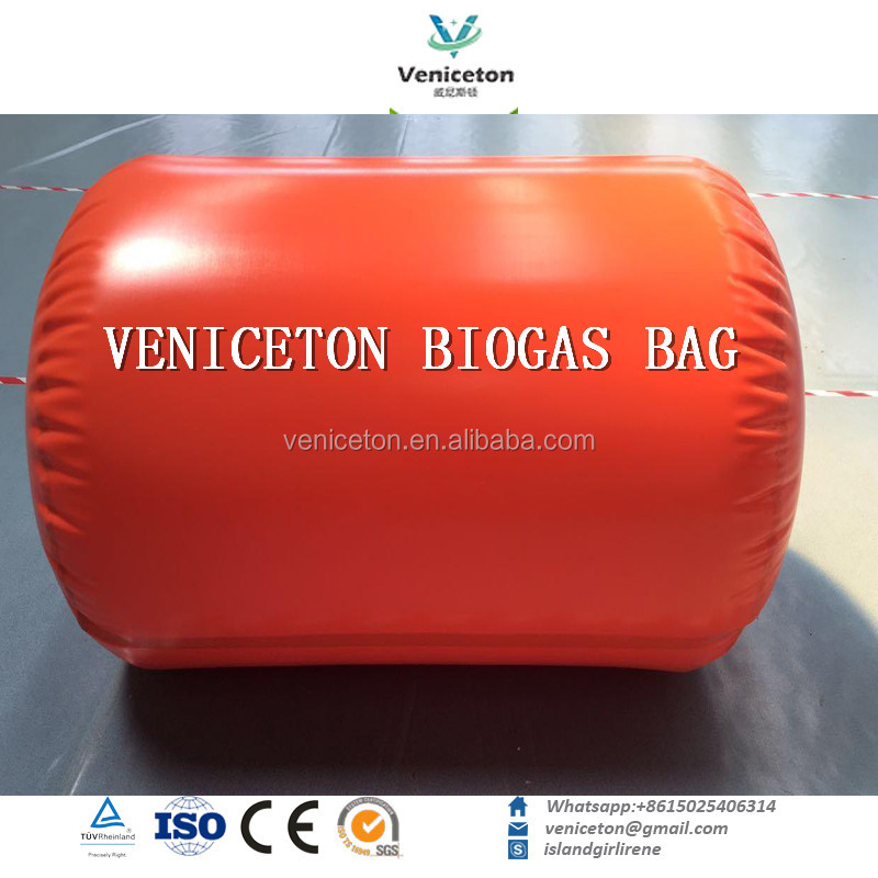 Veniceton China anaerobic digester gas biogas generator homemade