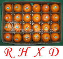 Fresh kinnow (mandarin orange),lugan/ponkan