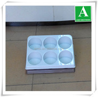 Large Thermoformed Plastic Tray for Display
