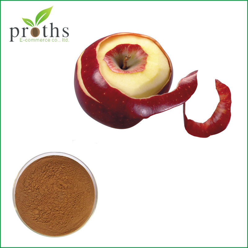 Hot selling lowest price dried apple extract cider vinegar powder
