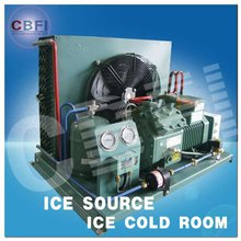 cold room unit ( Bitzer, Copeland, Frascold, Maneurop)