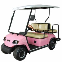 Pink 4 person electric beach buggy for sale